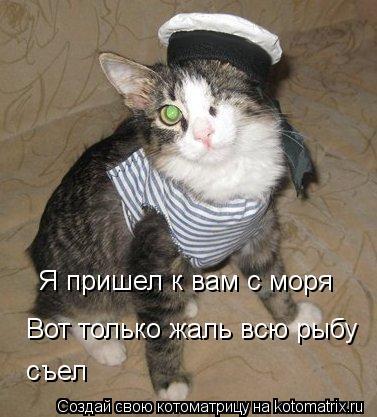 Котоматрица: Вот только жаль всю рыбу  съел Я пришел к вам с моря