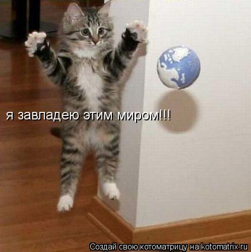 Котоматрица: я завладею этим миром!!!