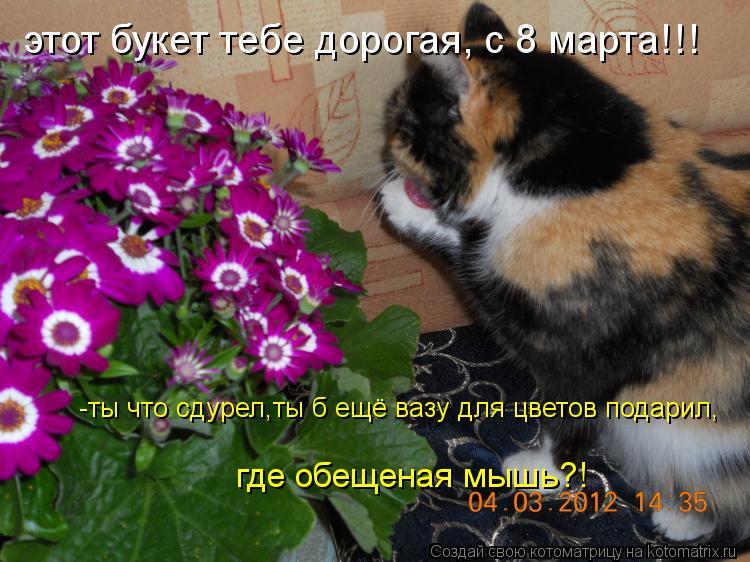 Котоматрица: этот букет тебе дорогая, с 8 марта!!! -ты что сдурел,ты б ещё вазу для цветов подарил,  где обещеная мышь?!