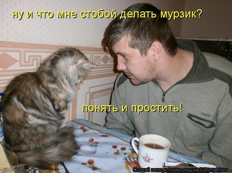 Котоматрица: ну и что мне стобой делать мурзик? понять и простить!
