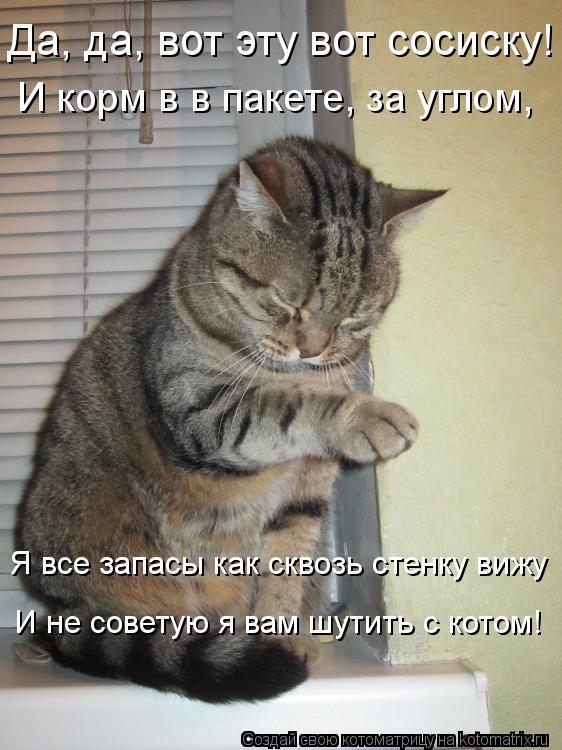 Котоматрица: Да, да, вот эту вот сосиску! И корм в в пакете, за углом, Я все запасы как сквозь стенку вижу И не советую я вам шутить с котом!