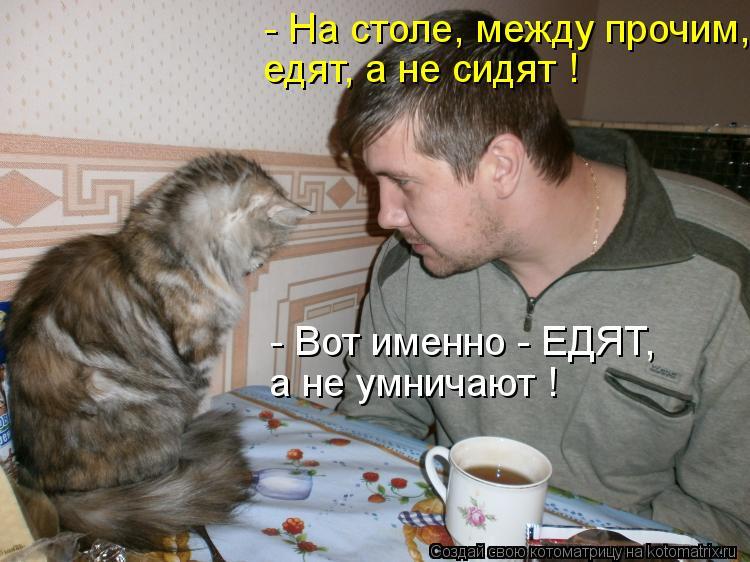 Котоматрица: - На столе, между прочим,  едят, а не сидят ! - Вот именно - ЕДЯТ, а не умничают !