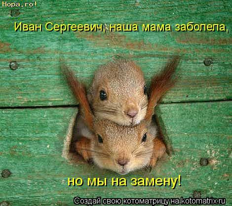 Котоматрица: Иван Сергеевич, наша мама заболела,   но мы на замену!
