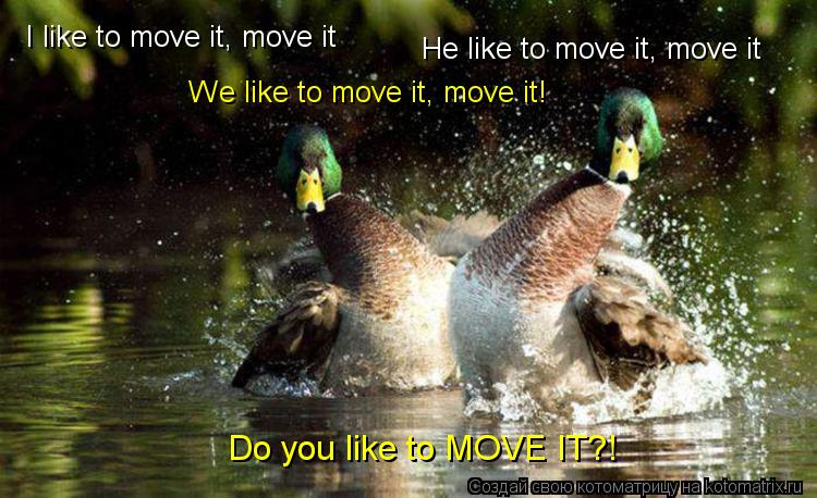 Котоматрица: I like to move it, move it He like to move it, move it We like to move it, move it! Do you like to MOVE IT?!