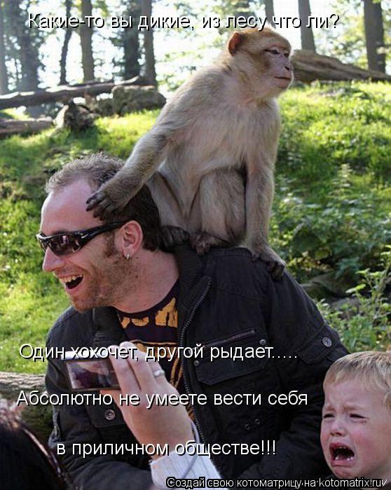 Котоматрица: Какие-то вы дикие, из лесу что ли?  Один хохочет, другой рыдает..... Абсолютно не умеете вести себя  в приличном обществе!!!