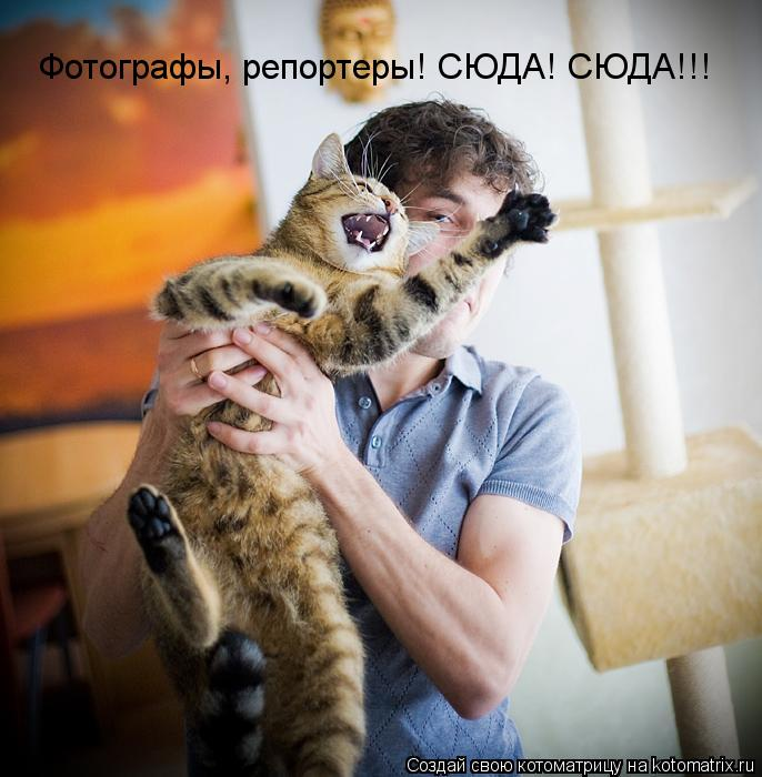 Котоматрица: Фотографы, репортеры! СЮДА! СЮДА!!!