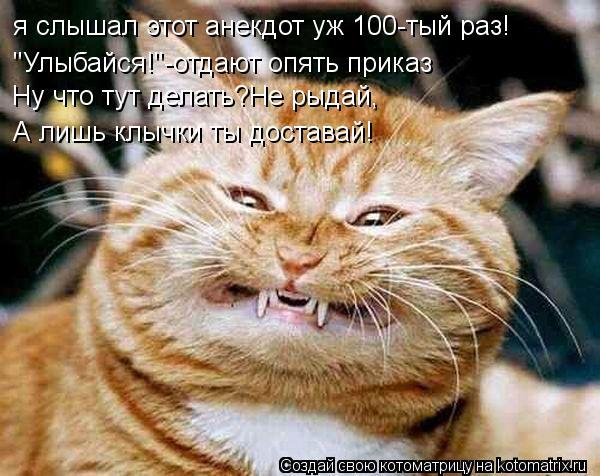 """Котоматрица: я слышал этот анекдот уж 100-тый раз! """"Улыбайся!""""-отдают опять приказ Ну что тут делать?Не рыдай, А лишь клычки ты доставай!"""