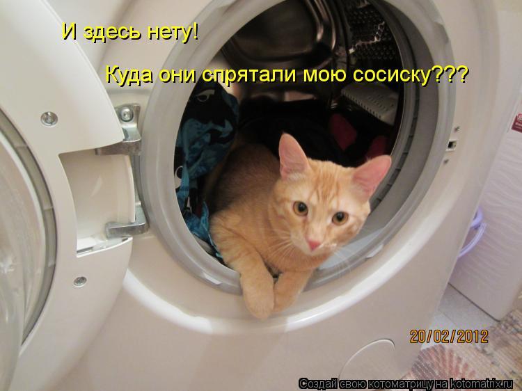 Котоматрица: И здесь нету! Куда они спрятали мою сосиску???