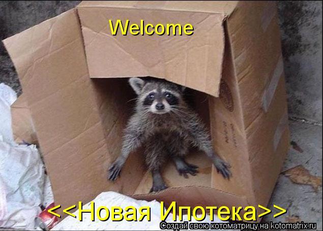 Котоматрица: <<Новая Ипотека>> Welcome