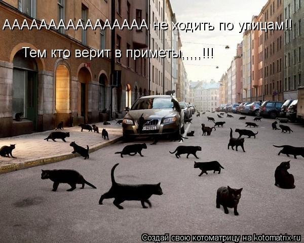 Котоматрица: АААААААААААААААА не ходить по улицам!! Тем кто верит в приметы,,,,,!!!