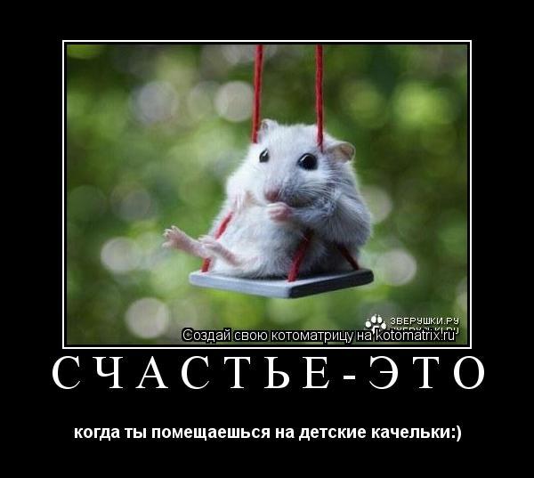 Котоматрица: Счастье-это когда ты помещаешься на детские качельки:)