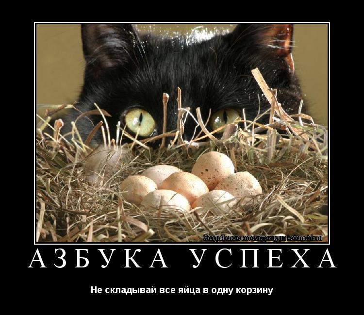 Котоматрица: АЗБУКА УСПЕХА Не складывай все яйца в одну корзину