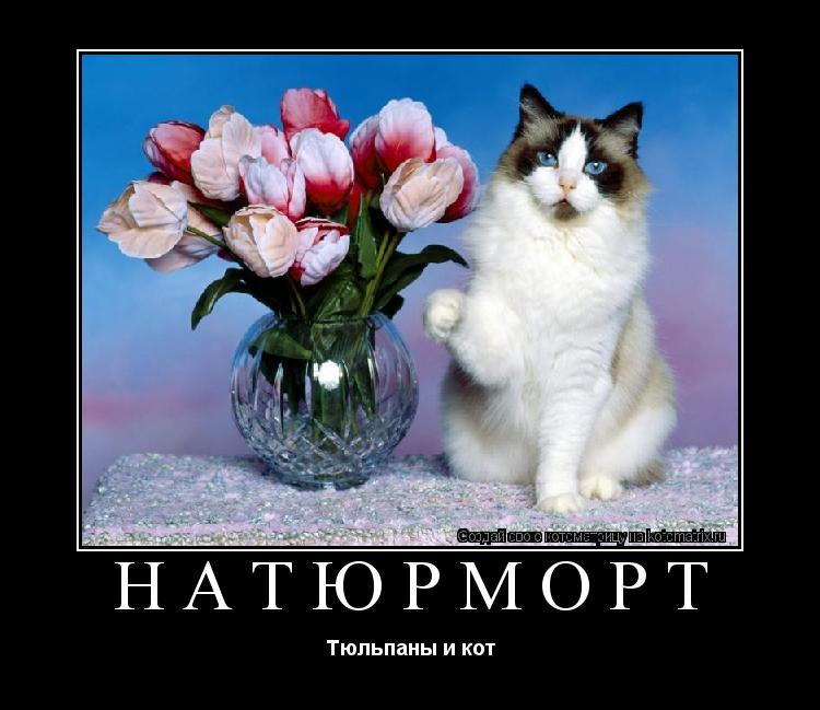 Котоматрица: Натюрморт Тюльпаны и кот
