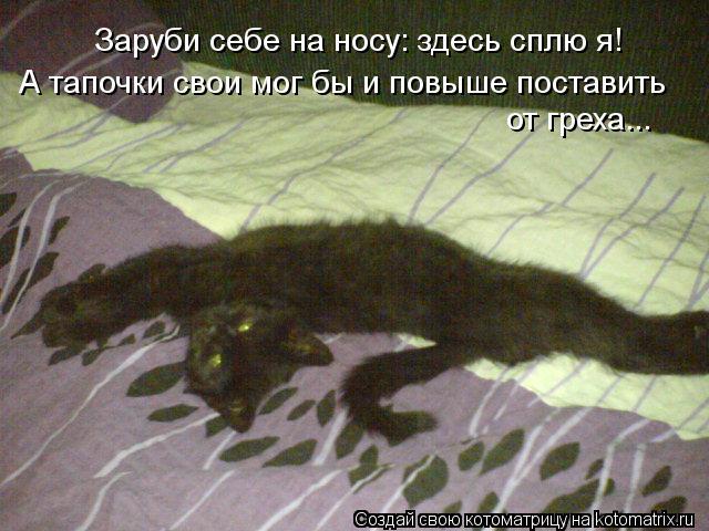Котоматрица: Заруби себе на носу: здесь сплю я! А тапочки свои мог бы и повыше поставить от греха...