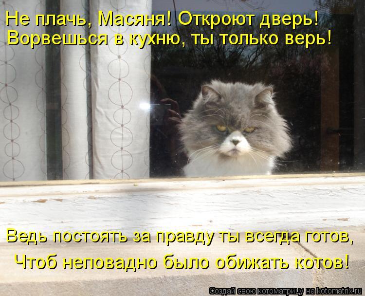 Котоматрица: Ворвешься в кухню, ты только верь! Чтоб неповадно было обижать котов! Ведь постоять за правду ты всегда готов,  Не плачь, Масяня! Откроют двер