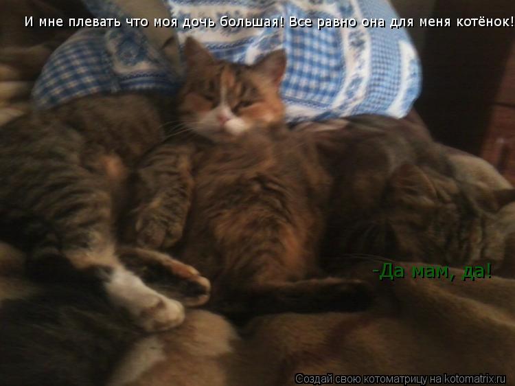 Котоматрица: И мне плевать что моя дочь большая! Все равно она для меня котёнок!) -Да мам, да!