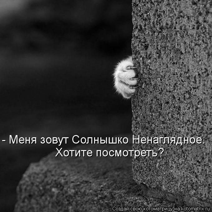 Котоматрица: Хотите посмотреть? - Меня зовут Солнышко Ненаглядное.