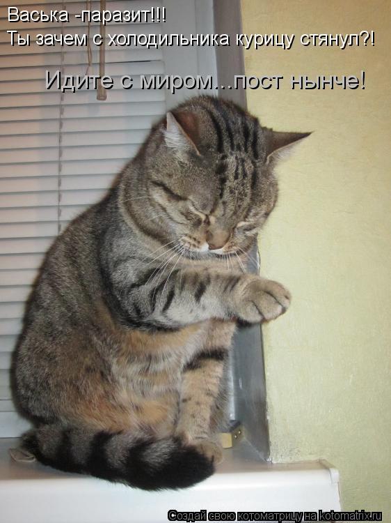 Котоматрица: Васька -паразит!!! Ты зачем с холодильника курицу стянул?! Идите с миром...пост нынче!