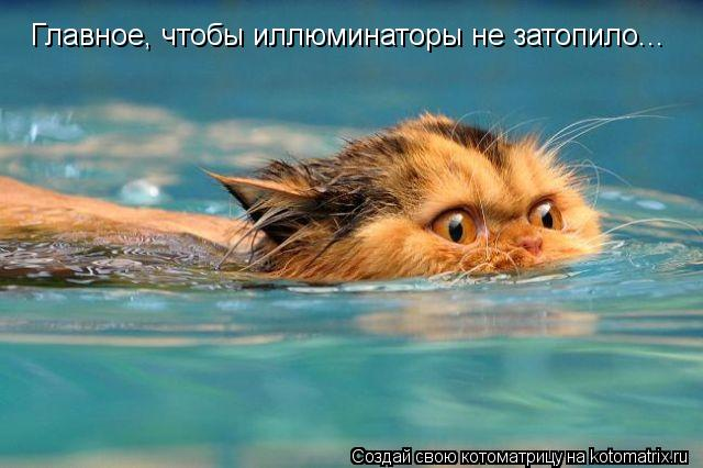 Котоматрица: Главное, чтобы иллюминаторы не затопило...