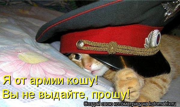 Котоматрица: Я от армии кошу! Вы не выдайте, прошу!