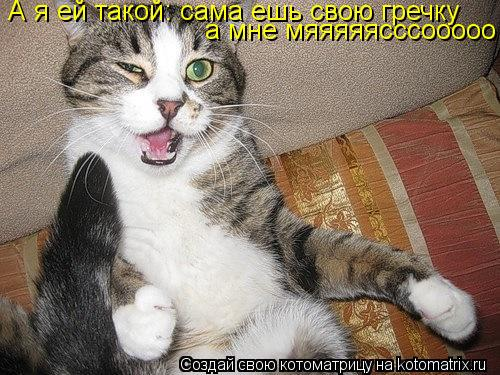 Котоматрица: А я ей такой: сама ешь свою гречку а мне мяяяяясссооооо