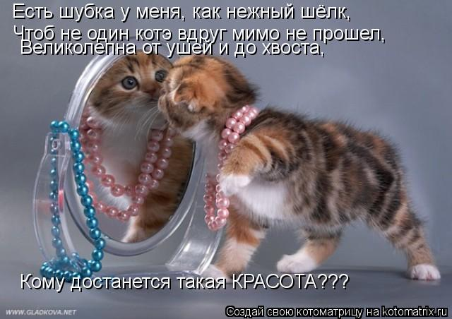 Котоматрица: Есть шубка у меня, как нежный шёлк, Чтоб не один котэ вдруг мимо не прошел, Великолепна от ушей и до хвоста, Кому достанется такая КРАСОТА???