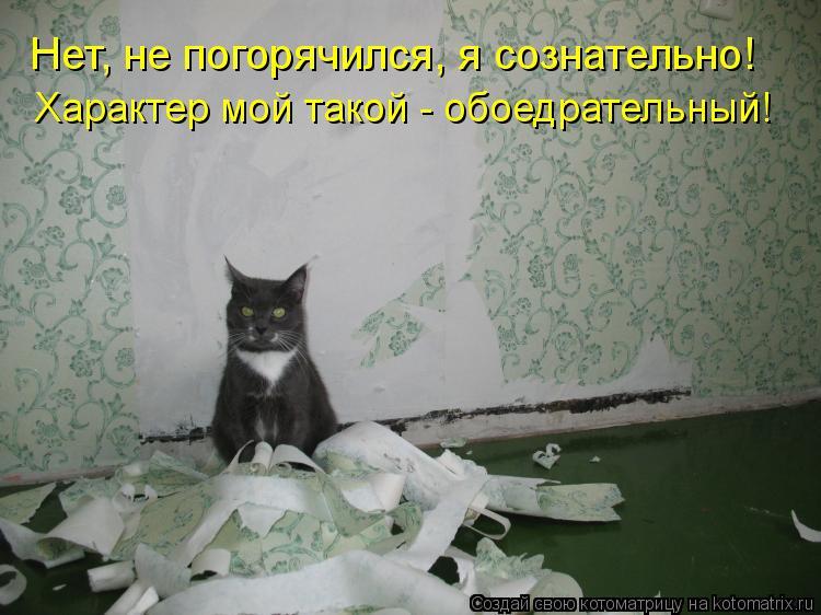 Котоматрица: Нет, не погорячился, я сознательно! Характер мой такой - обоедрательный!