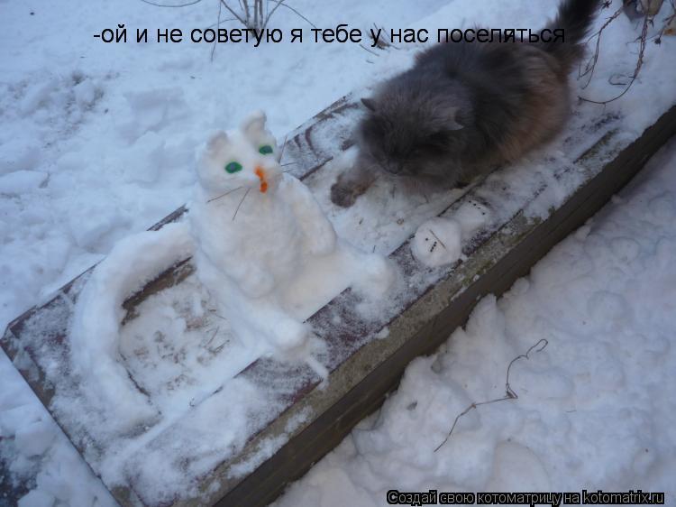 Котоматрица: -ой и не советую я тебе у нас поселиться -ой и не советую я тебе у нас поселяться