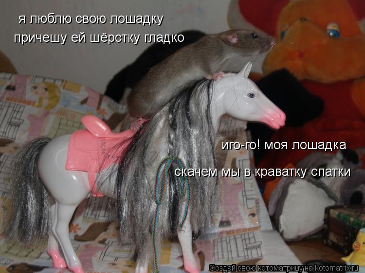 Котоматрица: я люблю свою лошадку причешу ей шёрстку гладко иго-го! моя лошадка скачем мы в краватку спатки
