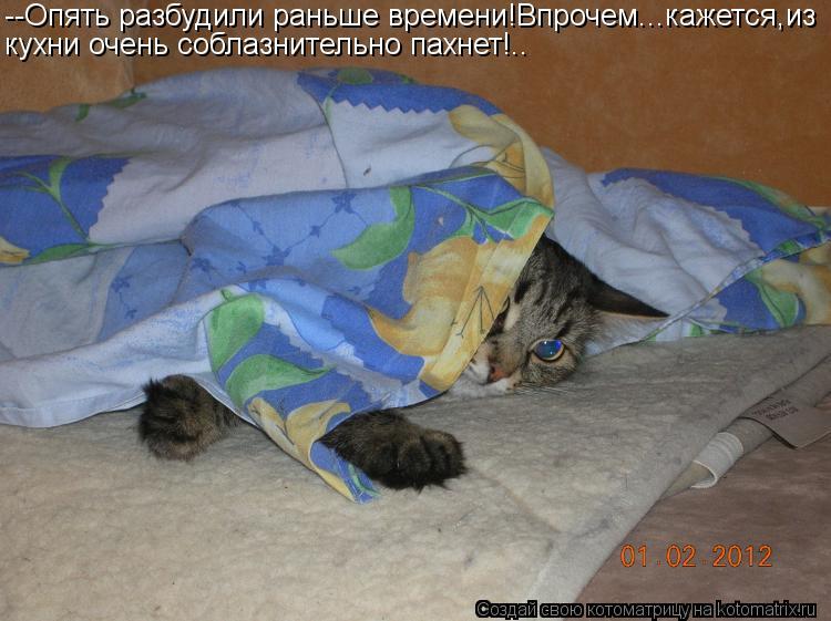 Котоматрица: --Опять разбудили раньше времени!Впрочем...кажется,из кухни очень соблазнительно пахнет!..