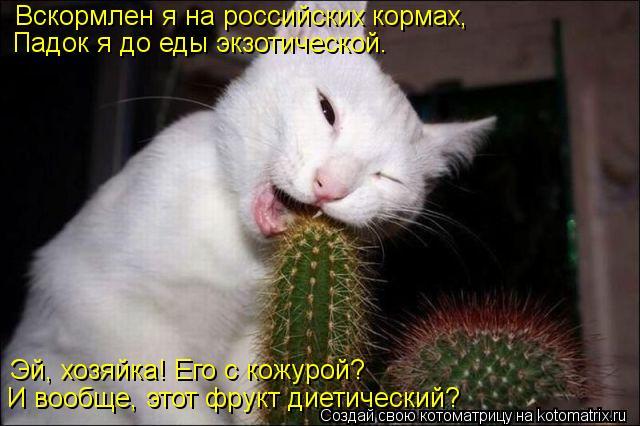 Котоматрица: Вскормлен я на российских кормах, Падок я до еды экзотической. Эй, хозяйка! Его с кожурой? И вообще, этот фрукт диетический?