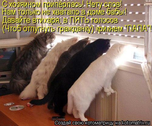 """Котоматрица: С хозяином припёрлась! Нету слов! Нам только не хватало в доме бабы! Давайте втихаря, в ПЯТЬ голосов (Чтоб отпугнуть гражданку) крикнем """"ПАПА"""""""