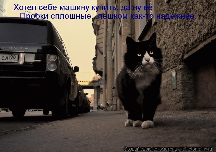 Котоматрица: Хотел себе машину купить, да ну её Пробки сплошные...пешком как-то надежнее.