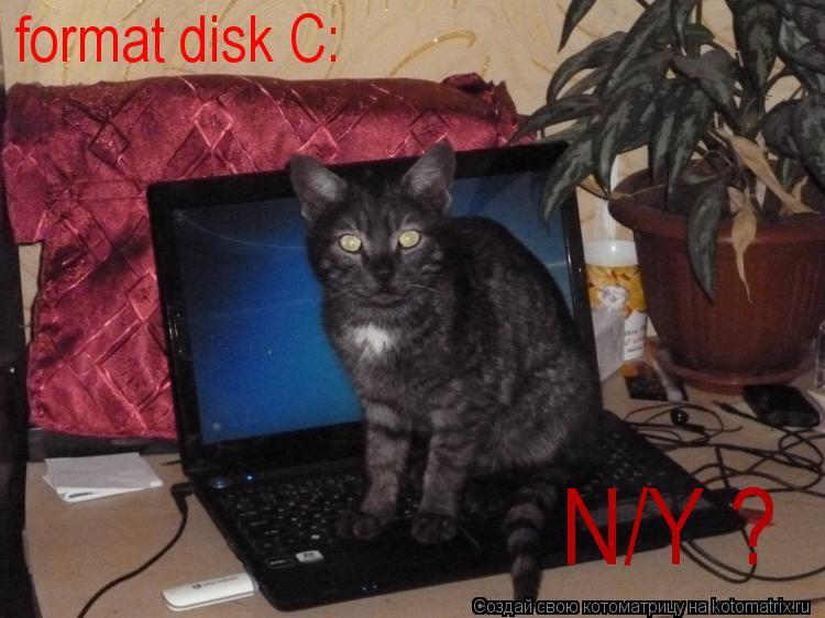 Котоматрица: format disk C: N/Y ?