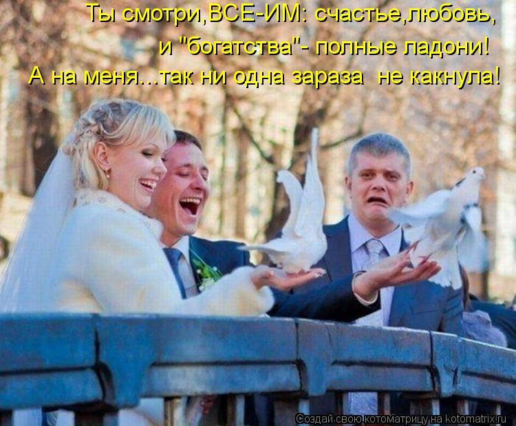 """Котоматрица: Ты смотри,ВСЕ-ИМ: счастье,любовь, и """"богатства""""- полные ладони! А на меня...так ни одна зараза  не какнула!"""