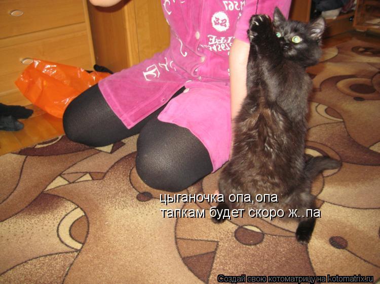 foto-volosatoy-popki