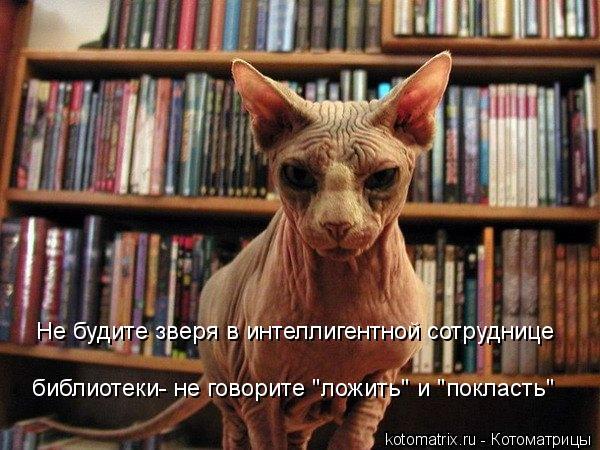 """Котоматрица - Не будите зверя в интеллигентной сотруднице библиотеки- не говорите """"л"""