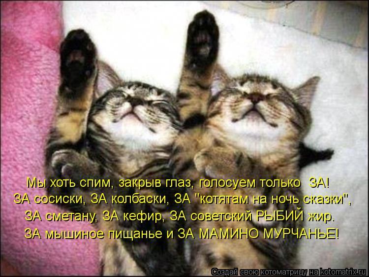"Котоматрица: Мы хоть спим, закрыв глаз, голосуем только  ЗА! ЗА сосиски, ЗА колбаски, ЗА ""котятам на ночь сказки"",  ЗА сметану, ЗА кефир, ЗА советский РЫБИЙ ж"