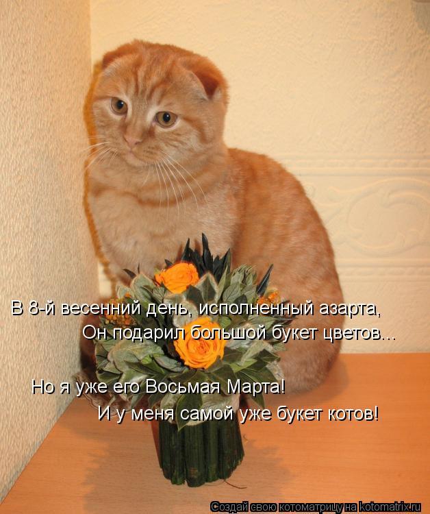 Котоматрица: В 8-й весенний день, исполненный азарта, Он подарил большой букет цветов... Но я уже его Восьмая Марта! И у меня самой уже букет котов!