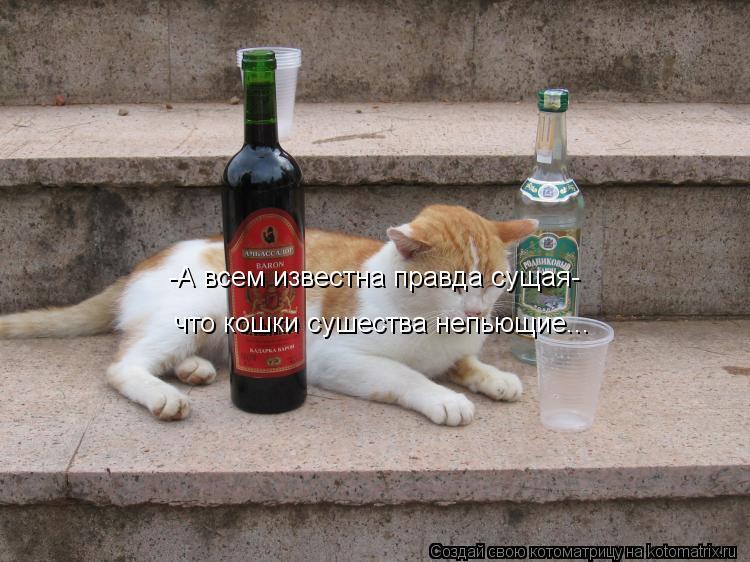 Котоматрица: -А всем известна правда сущая- что кошки сушества непьющие...