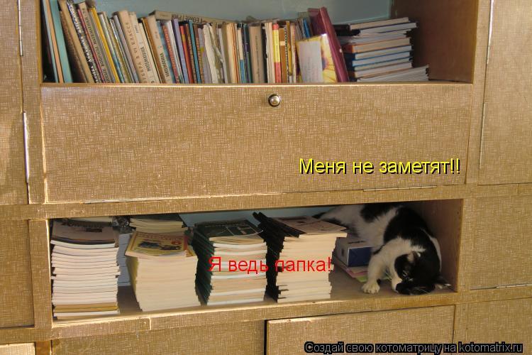 Котоматрица: Меня не заметят!! Я ведь папка!