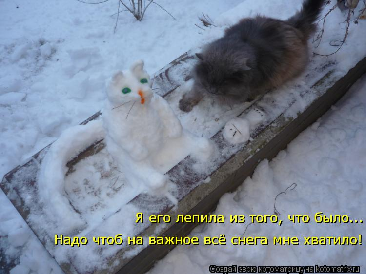 Котоматрица: Надо чтоб на важное всё снега мне хватило! Я его лепила из того, что было...