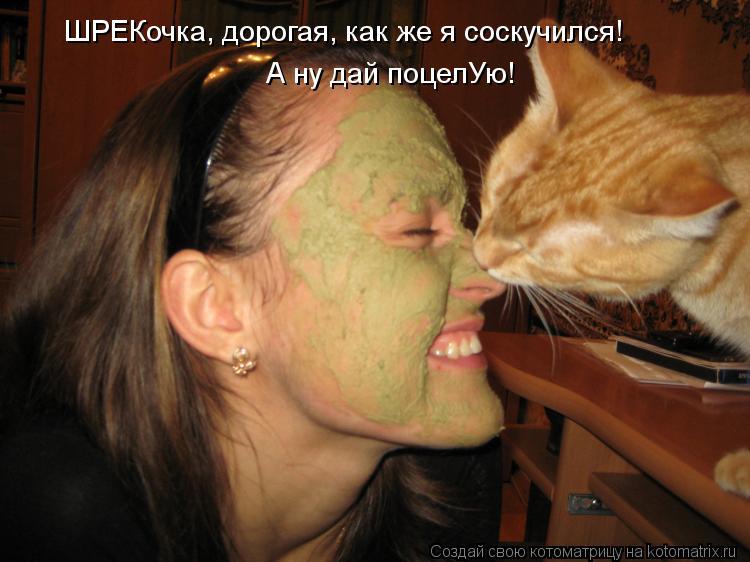 Котоматрица: ШРЕКочка, дорогая, как же я соскучился! А ну дай поцелУю!