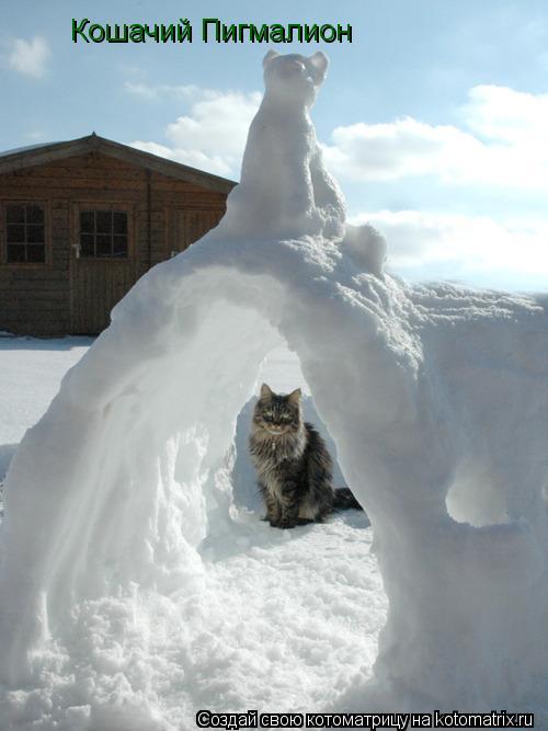 Котоматрица: Кошачий Пигмалион