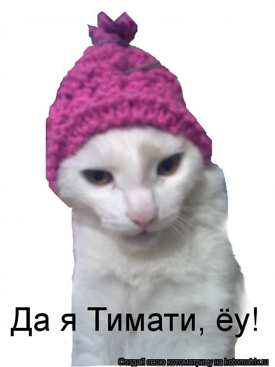 Котоматрица: Да я Тимати, ёу!