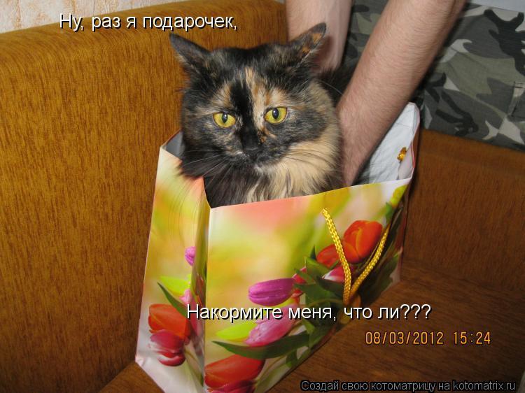 Котоматрица: Ну, раз я подарочек, Накормите меня, что ли???