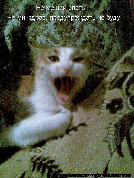 Котоматрица: Не мешай спать!  Не минздрав, предупреждать не буду!