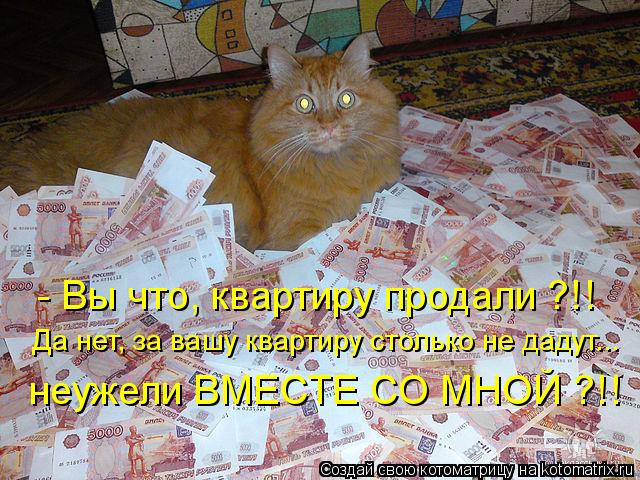Котоматрица - Да нет, за вашу квартиру столько не дадут... неужели ВМЕСТЕ СО МНОЙ ?!
