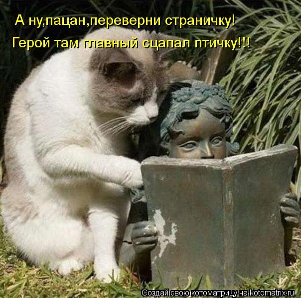 Котоматрица - А ну,пацан,переверни страничку! Герой там главный сцапал птичку!!!