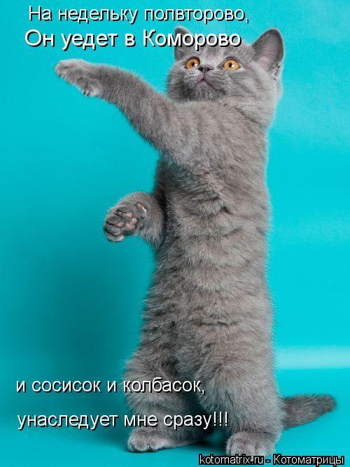 Котоматрица: На недельку полвторово, Он уедет в Коморово и сосисок и колбасок, унаследует мне сразу!!!
